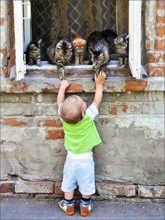 Super cute!!
