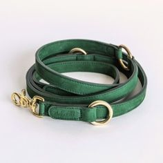 Dog Leash Tiergarten Nubuck Park Green