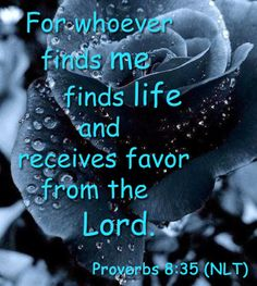 Bible verse of the day... in Proverbs 8:35 (NLT) - For whoever finds me finds life     and receives favor from the Lord.