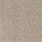 Carpet Sample - Lavish II - Color Arctic Chill Texture 8 in. x 8 in.