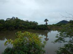 De natuur rondom de Saddle Mountain ranch is erg mooi #Rupununi #Guyana
