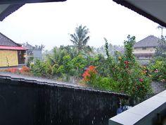 11/29(火)バリ島ウブドのお天気は雨。室内温度28.2℃、湿度74%。雨、、、ですね。噂によると、洪水の名所(笑)アンドン通りのガソリンスタンド前は大変なことになってるとか??