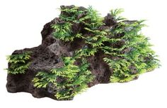 Fluval Foreground Rock Aquarium Ornament, http://www.amazon.com/dp/B004H1WJ9I/ref=cm_sw_r_pi_awdm_-62atb1VS55D0