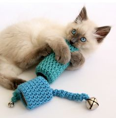 cat toy free crochet pattern uses two toilet paper holders. Image source: DabblesAndBabbles.com