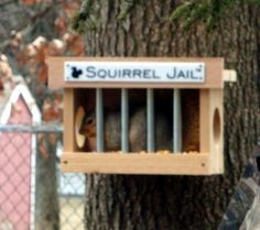 Squirrel Jail™ is a uniquely original squirrel feeder that puts these perps in their place.