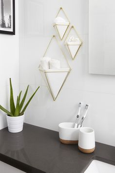 Clever solution for keeping bathroom essentials off the counter. Umbra TRIGG Wall Vessel design by Moe Takemura can be used in many rooms of the house. Including the bathroom.