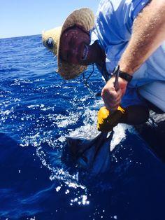 Happy Fishing, Fishing Life, Sydney Black, Port Macquarie, Fishing Tournaments, Fishing Videos, Deep Sea Fishing, Big Game