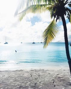 """Repost from Instagram ! #WeLike ! #Madinina by @caslyps """"My paradise  #martinique #beach"""" http://ift.tt/1MUH5Sp"""