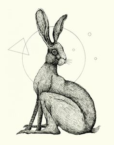 'Wildlife Analysis 06' by Alex G. Griffiths.