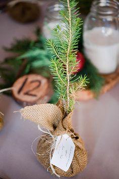 Für jeden Gast gibt es eine Pflanze als Geschenk, die direkt nach der Hochzeit eingepflanzt werden kann. So hat jeder Gast eine tolle und bleibende Erinnerung an diesen Tag. #pflanzenfreude #pflanze #plant #hochzeit #geschenk