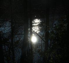 https://www.flickr.com/photos/139687597@N08/shares/tNq90x   Photos de clarou b