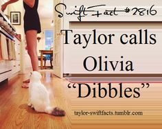 """""""It's like, her name is Olivia, but her personality is more like: 'hey guys! It's Dibbles!!'"""" - Taylor Swift on her new cat, Detective Olivia Benson (aka Dibbles)❤️❤️❤️"""