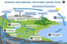 Dynamic and complex: the global water cycle — Science Learning Hub Earth Science, Life Science, Science And Nature, Science Education, Human Geography, Physical Geography, Geography Lessons, Water Cycle Information, Nutrient Cycle
