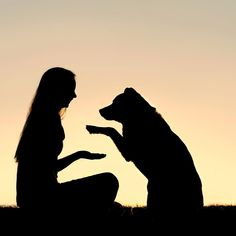 Attention dog lovers we need your help! We are on the hunt for top-notch trainers certified dog training schools and certification programs. Please leave us a recommendation of whom you found to be the best in your area. Dog Training School, Dog Training Books, Silhouette Painting, Dog Silhouette, Education Canine, Girl And Dog, Dog Photos, Cute Baby Animals, Animal Photography