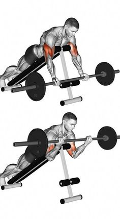 Illustration about Cable Rope Rear Delt Rows. Exercising for bodybuilding Target muscles are marked in red. Initial and final steps. Illustration of bodybuilding, lower, exercising - 67871989 Fitness Gym, Muscle Fitness, Physical Fitness, Mens Fitness, Fitness Tips, Muscle Food, Health Fitness, Best Ab Workout, Gym Workout Tips