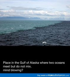Place in the Gulf of Alaska where two Oceans meet, Amazing they don't mix! Golf Von Alaska, Two Oceans Meet, Oh The Places You'll Go, Places To Visit, Beautiful World, Beautiful Places, Beautiful Scenery, Mind Blowing Facts, To Infinity And Beyond