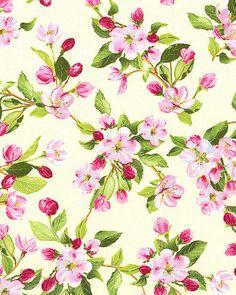 Apple Blossom Festival - In Full Bloom - Cream