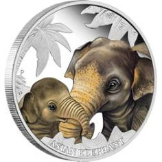 Mother's Love – Asian Elephant 2014 1/2oz Silver Proof Coin
