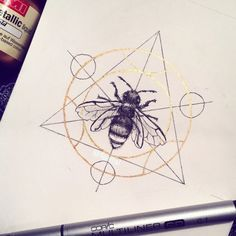 day A bee in a transmutation circle! Because I love bees and I lov… day A bee in a transmutation circle! Because I love bees and I love Fullmetal Alchemist🐝 . Wolf Tattoos, Cute Tattoos, Tatoos, Bee Sketch, Sketch Ink, Bee Drawing, I Love Bees, Rosen Tattoos, Harry Potter Tattoos
