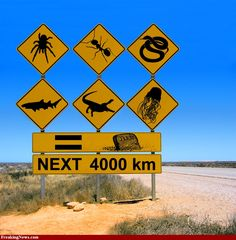 World Cup Fun Fact: AUSTRALIA How does a road trip in Australia sound to you? Think outback, aborigines, diving, wildlife and so much more! Interesting road signs only in Australia! Drivers, beware kangaroos that might hop across the roads! Western Australia, Australia Travel, Queensland Australia, Australia Funny, Visit Australia, South Australia, Australia Winter, Australian Road Signs, Australian Memes