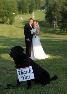 Bride and Groom and pup... thank you!  www.easphotography.biz