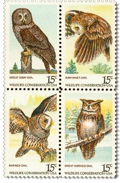 U.S. postage stamps ~ Set of 4 Wild Owls: Great Gray Owl, SawWhet Owl, Barred Owl, Great Horned Owl