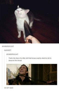 Sometimes Tumblr comments are the best part of the photo (20 Photos) : theCHIVE