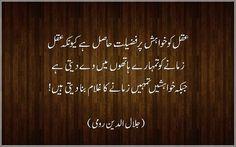 Mevlana Rumi Quotes in urdu Imam Ali Quotes, Rumi Quotes, Text Quotes, Poetry Quotes, Wisdom Quotes, Mormon Quotes, Islamic Qoutes, Deep Words, English Quotes