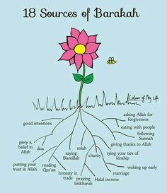 Sources of barkah