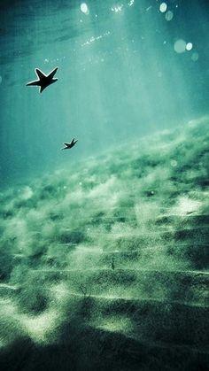 Biển cả mênh mông