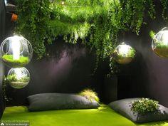 Le studio de design végétal Ile de France-Vegetal Atmosphere tricoire design paris