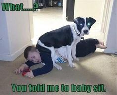 Isnt that the meaning of baby sit?                              …