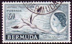 Bermuda 1953 Queen Elizabeth II Royal Visit Fine Used SG 151 Scott 163 Other Stamps HERE