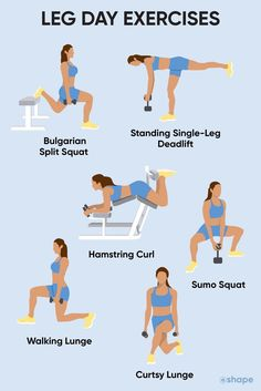 Full Body Workouts, Leg Day Workouts, Beginner Workouts, Gym Workout For Beginners, Workout Videos, At Home Workouts, Leg Workout Routines, Workout Exercises, Fitness Exercises
