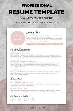 Professional Resume Templates  Modern Resume Templates  Modern