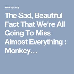 The Sad, Beautiful Fact That We're All Going To Miss Almost Everything : Monkey…