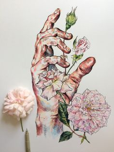 Artist Noel Badges Pugh creates studies of his own hands mixed with drawings of flowers and bees #illustration
