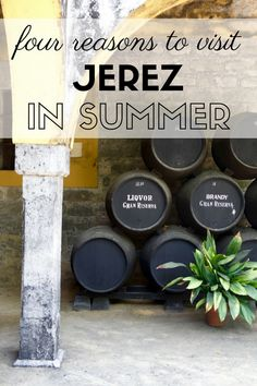 Beat the Heat and Head to Jerez this Summer Spanish Wine, Spanish Culture, Southern Europe, Beat The Heat, Travel Organization, Spain And Portugal, Andalusia, Seville, Culture Travel