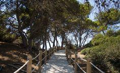Las Salinas | Ibiza