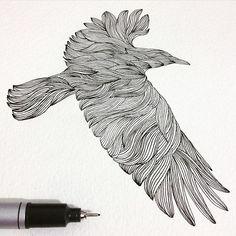 Thiago Bianchini - Crow