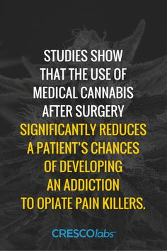 Studies show that the use of medical cannabis after surgery significantly reduces a patient's chances of developing an addiction to opiate pain killers. (medical cannabis, marijuana) More info: http://www.crescolabs.com/conditions/chronic-post-operative-pain/?utm_content=buffereaf54&utm_medium=social&utm_source=pinterest.com&utm_campaign=buffer