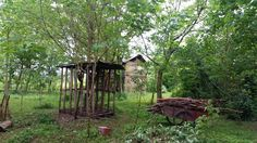 La legnaia nel bosco