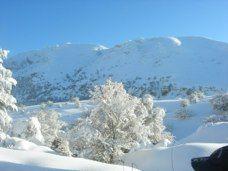 nevicata su Piano Battaglia a Petralia Sottana (PA)