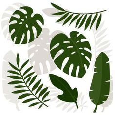 Image Details ING_19085_00227 - Tropical leaves. Vector illustration. Eps 10