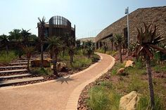 Department of Arts and Culture South Africa, Freedom, Country Roads, Culture, Park, Liberty, Political Freedom, Parks