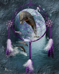 Mystic Digital Art - Dream Catcher Dolphins by Ali Oppy Dolphin Art, Dolphin Images, Dolphins Tattoo, Dream Catcher Craft, Bottlenose Dolphin, Humpback Whale, Wale, Killer Whales, Ocean Life