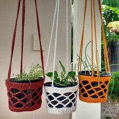 Agora suportes em crochê também! Adoro experimentar todas essas possibilidades de cores, tamanhos, modelos! Estes estão disponíveis! 😉 Ótima ideia para espaços reduzidos, pendurar tudo! 🌿🌵🍀🌱🍃 . . #denoemno #planthanger #crochetplanthanger #crochet #croche #crochetando #decoracao #feitocomcarinho #feitoamao #euquefiz #comprodequemfaz #handmade #hortinha #jardimsuspenso #decor #nature #artesanato #artlove