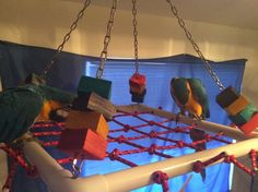 Cargo Net PVC Hanging Gym for Large Parrots | Bird Preferred LLC