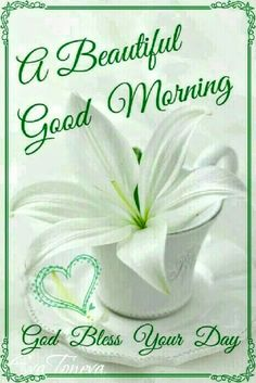 Hi, and good morning! Have a blessed day. Good Morning Friends Quotes, Good Morning Cards, Good Morning Texts, Good Morning Sunshine, Good Morning Messages, Good Morning Good Night, Good Morning Wishes, Good Morning Images, Good Night Greetings