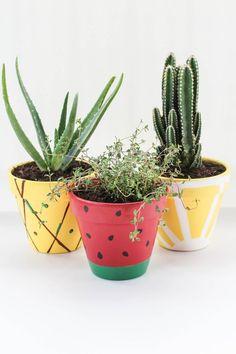 DIY Fruit Planters